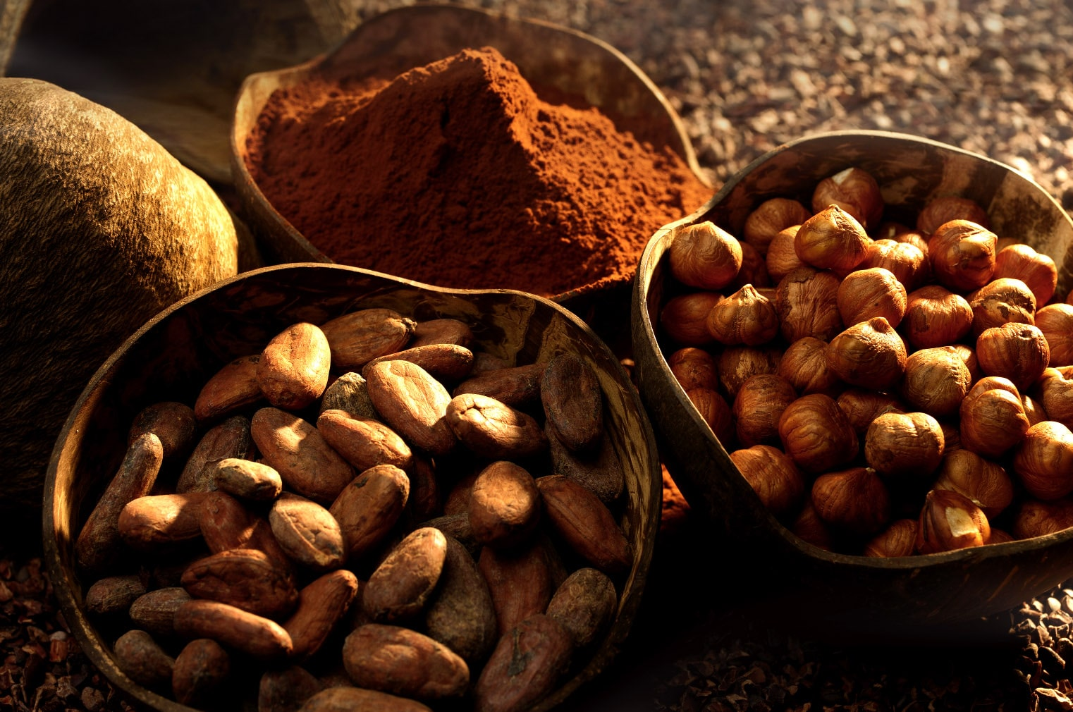 Côte d'Or Beans Powder & Hazelnuts-min