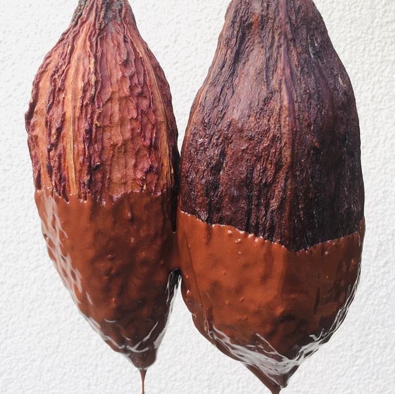 MIA Dipped Cocoa Pod